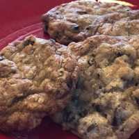 CtBF - chewy chocolate chip cookies